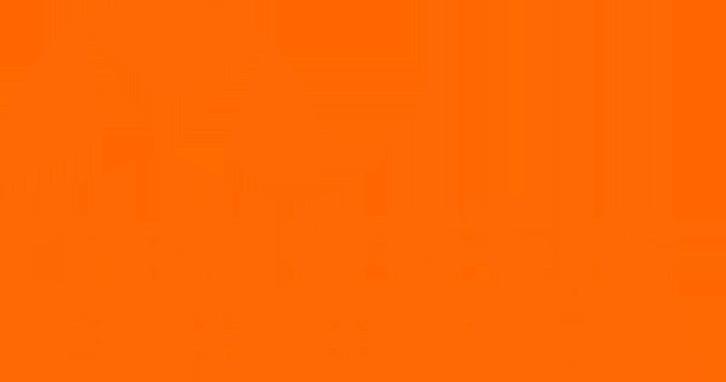 Majestic Sport Sp. Z o. o. Sp. Komandytowa  Copy